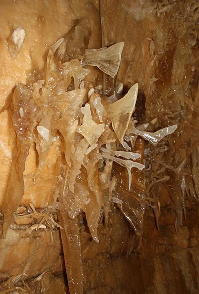 Fishtail Helictites in Caverns of Sonora Photo Credit: Wikipedia Commons