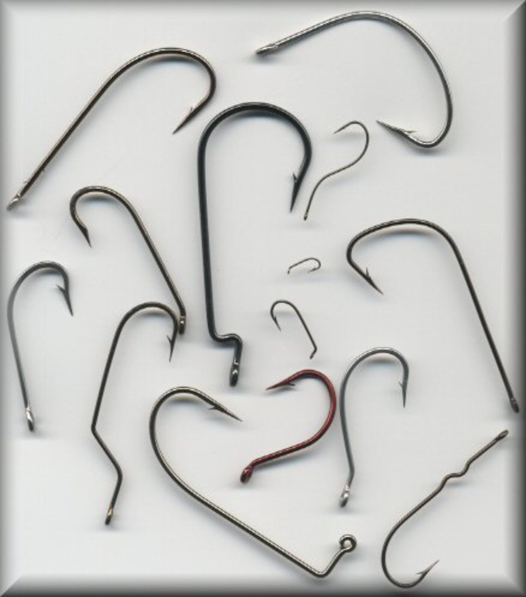 Shapes and Sizes of Fishing Hooks
