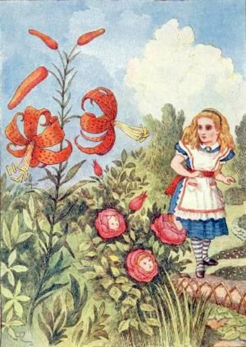 """Tiger Lily"" by John Tenniel"