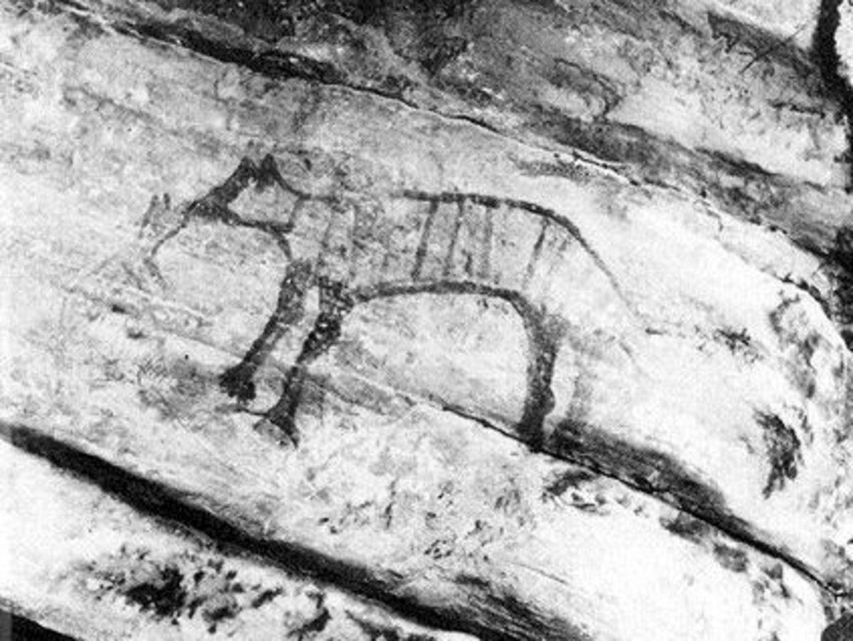Thylacine rock art