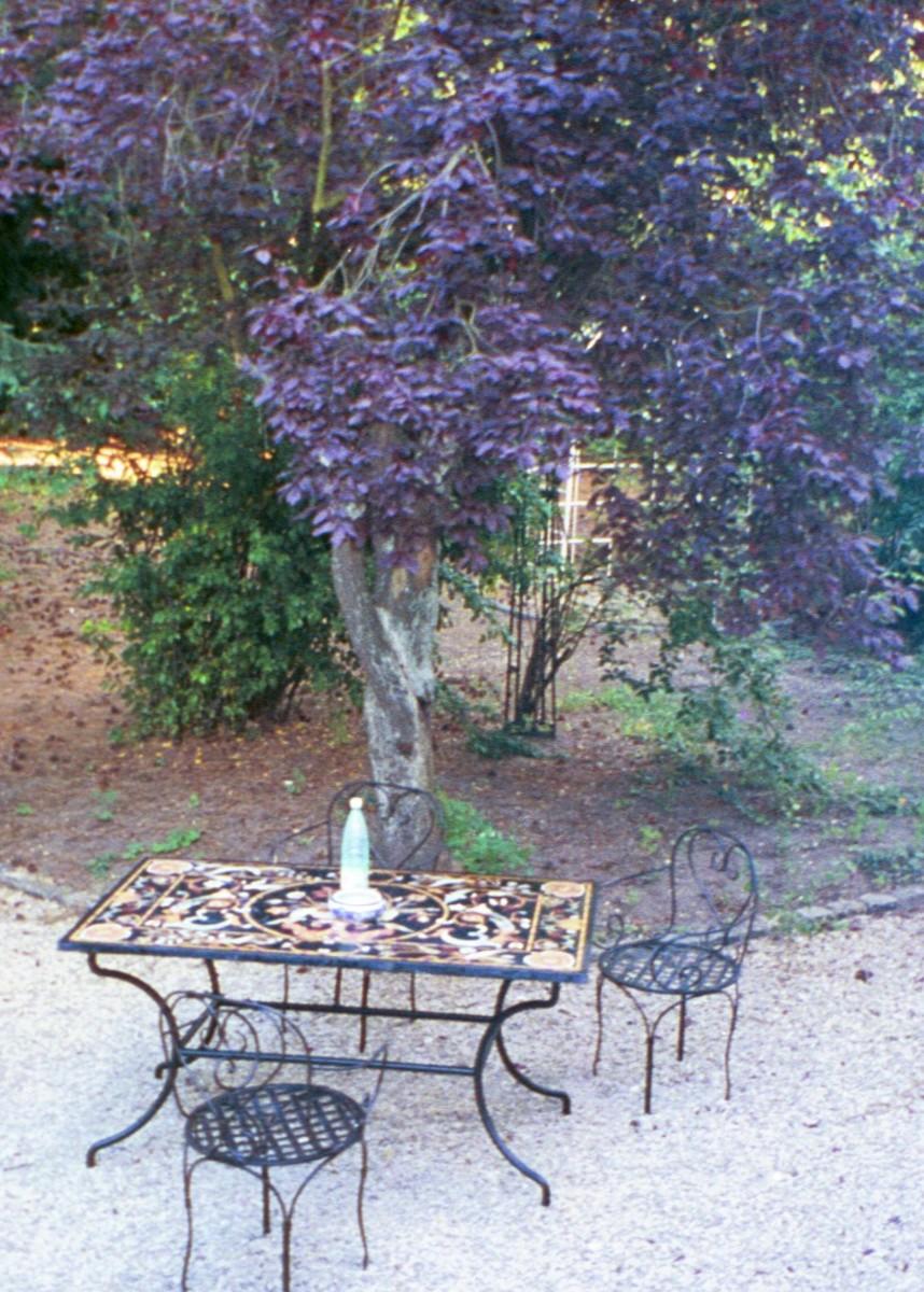 My friends garden, Sceaux, France