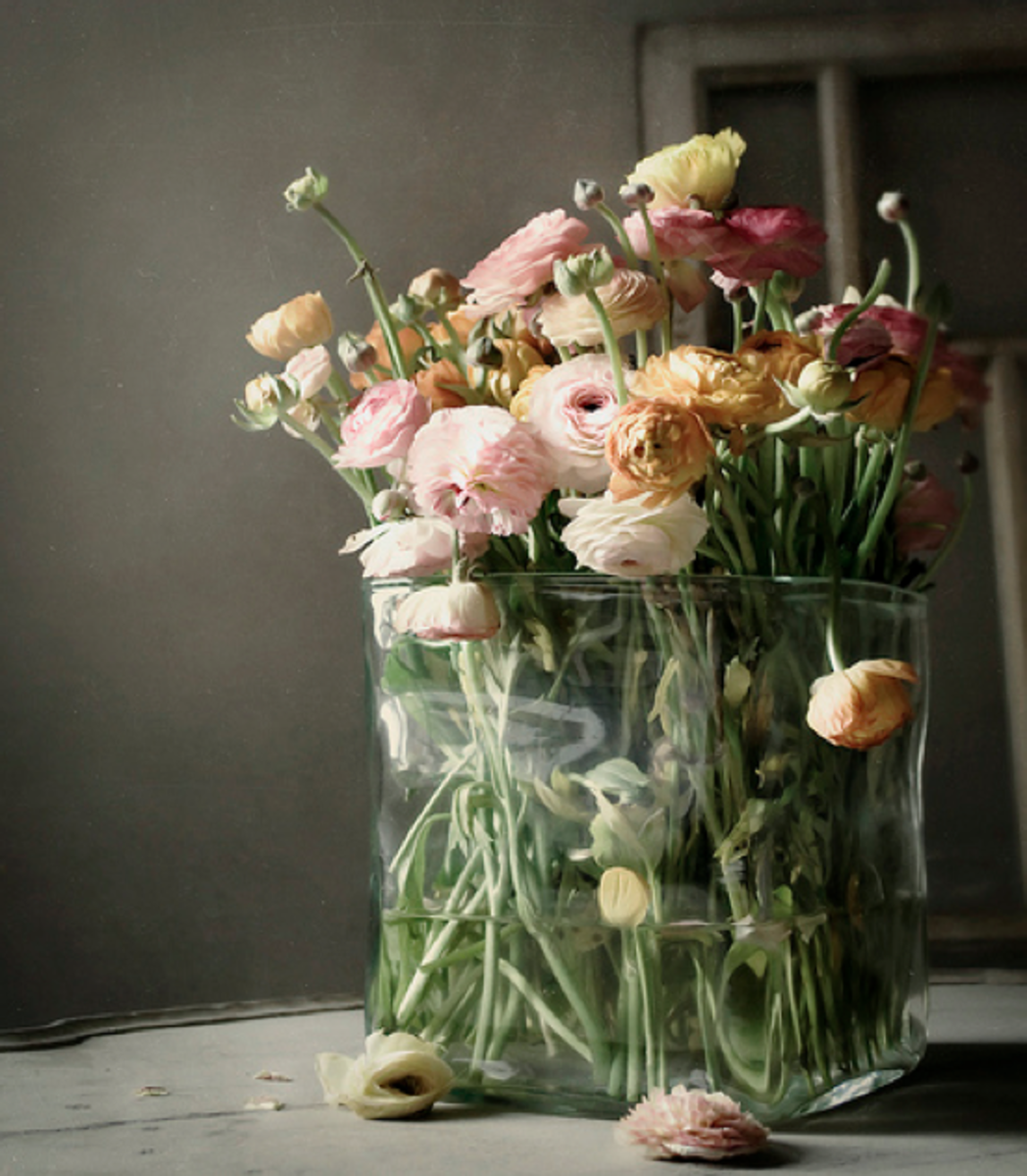 the charm of fragrant flowers