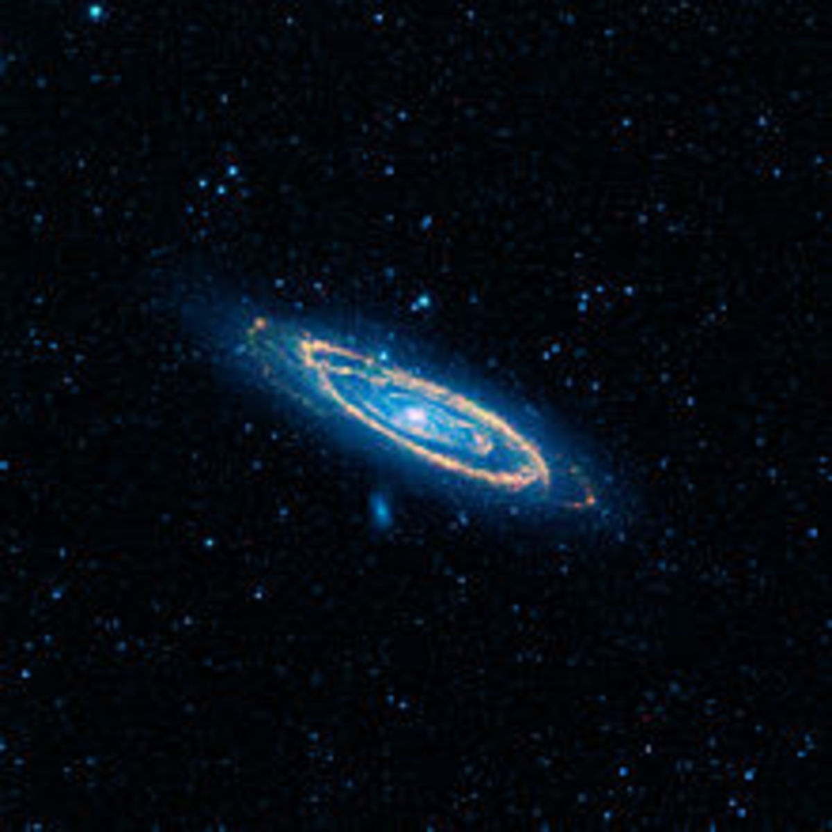 Andromeda as Seen By NSASA's Wide-Field Infrared Survey Explorer