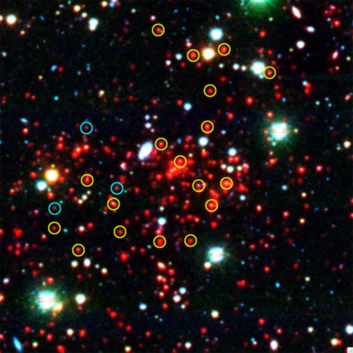 Galaxy Cluster...