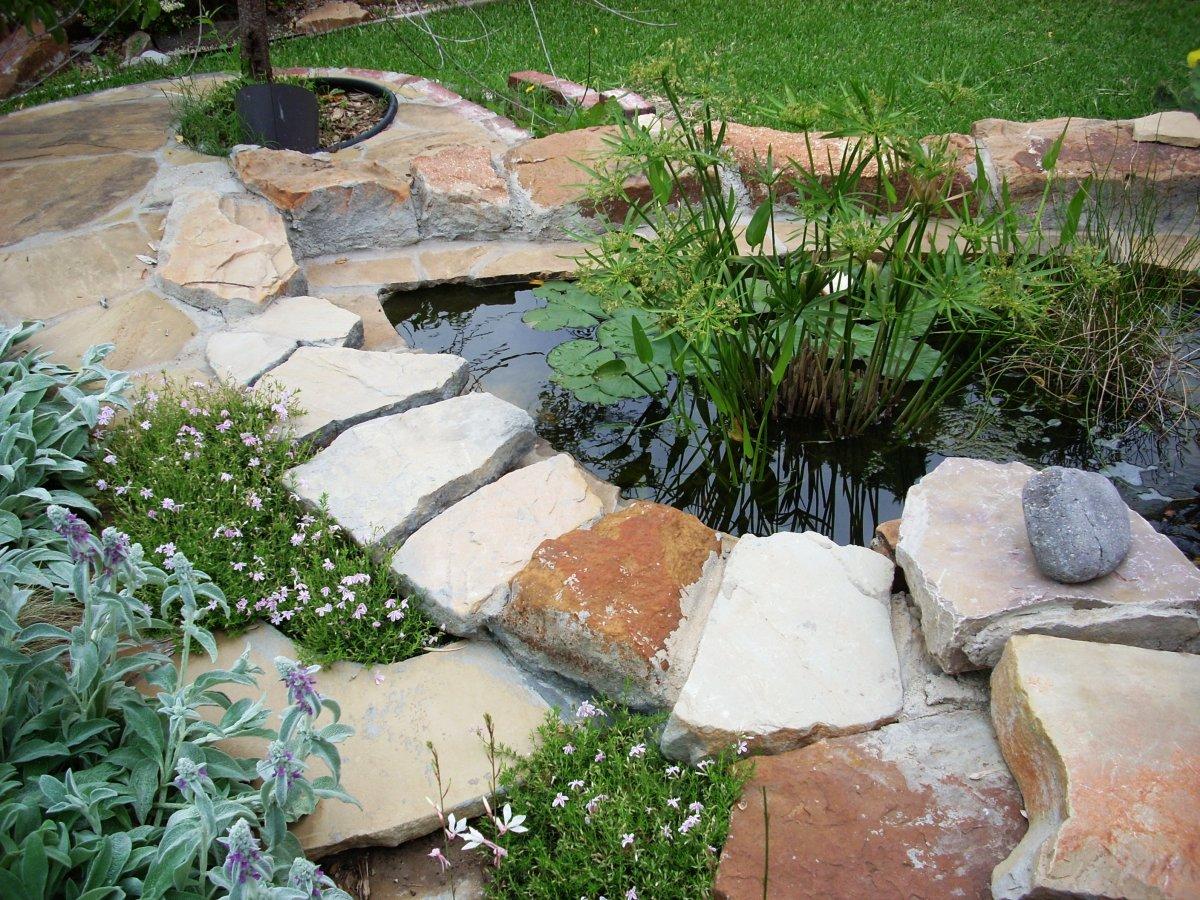 Author's pond