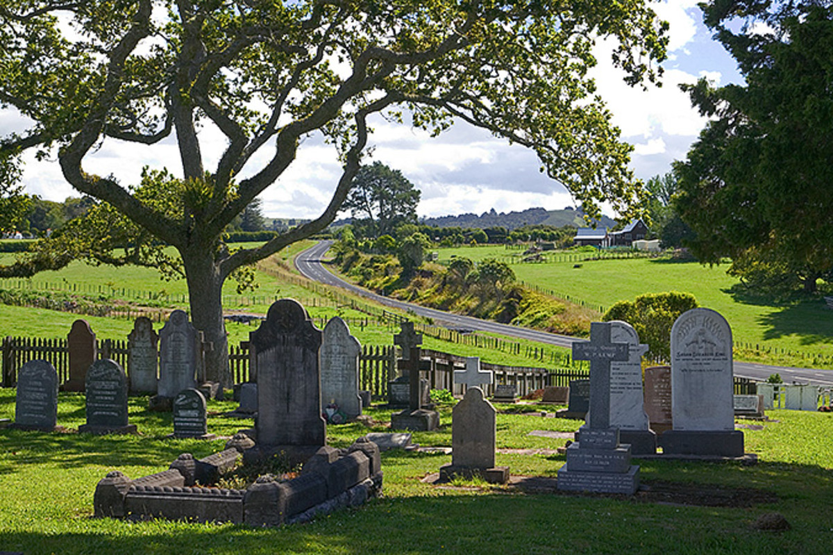 the-deer-in-the-graveyard