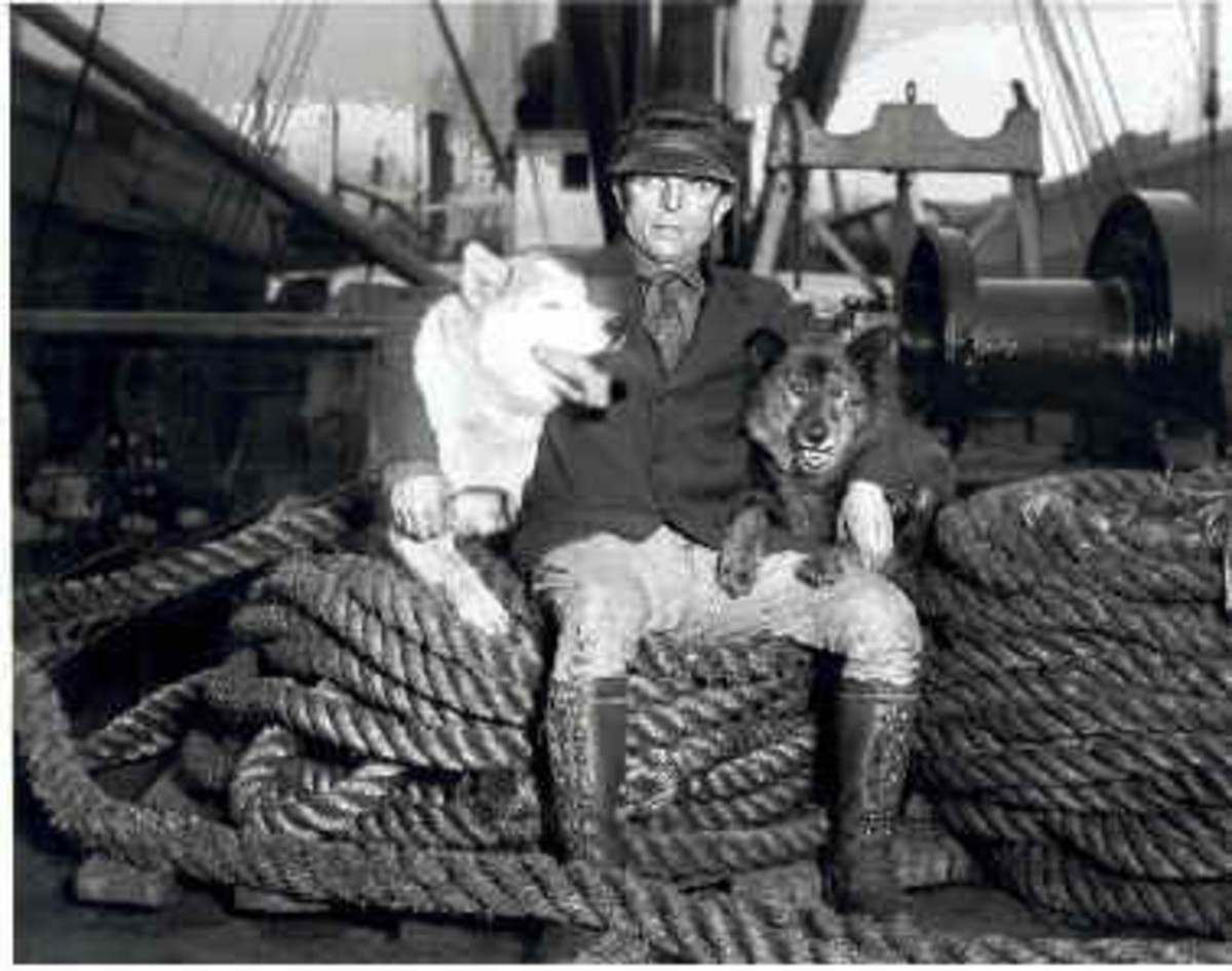 Seppala with Fritz (left) and Togo (right).