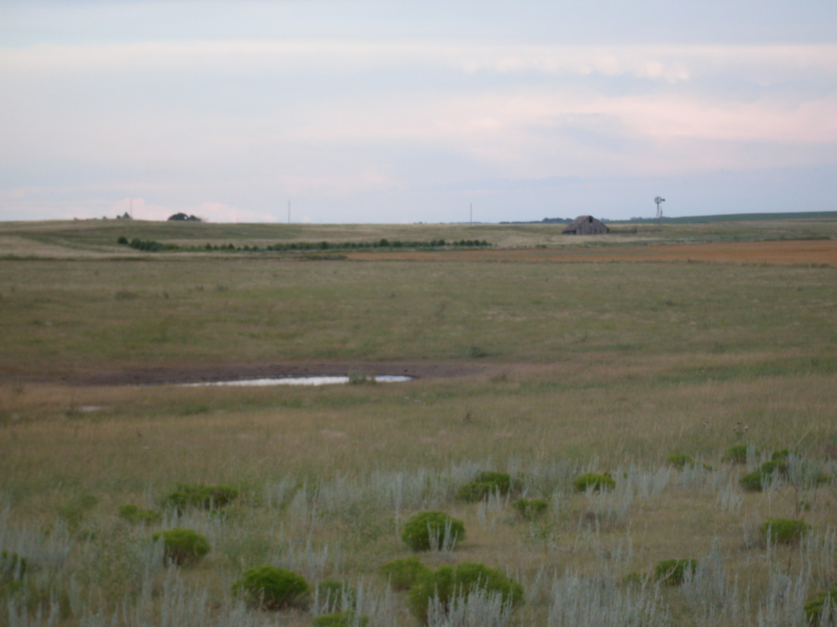 As the year had been quite rainy, I was disappointed that the Buffalo Wallow was dry by the time I got to take photos...