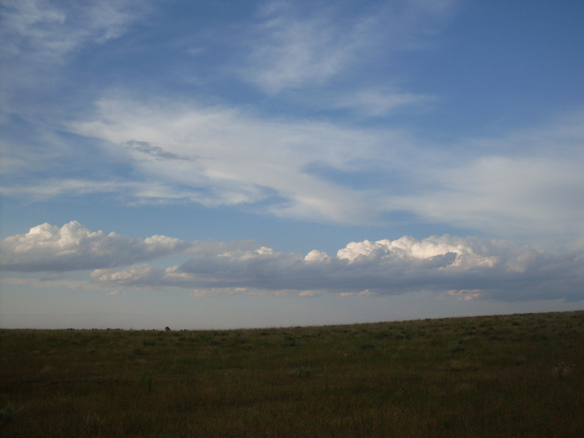 Wide open spaces - the back yard I grew up playing in.