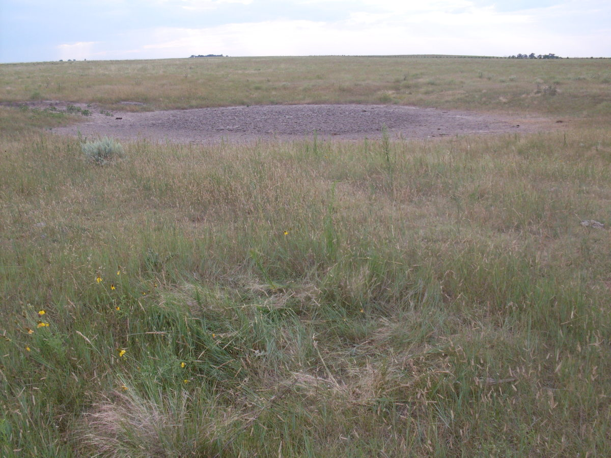 This is the Buffalo Wallow, in September 2009. There was no water in it, and the mud had dried. It is called a wallow because the bison who came through the area would roll in it to get away from the insects and to cool themselves.