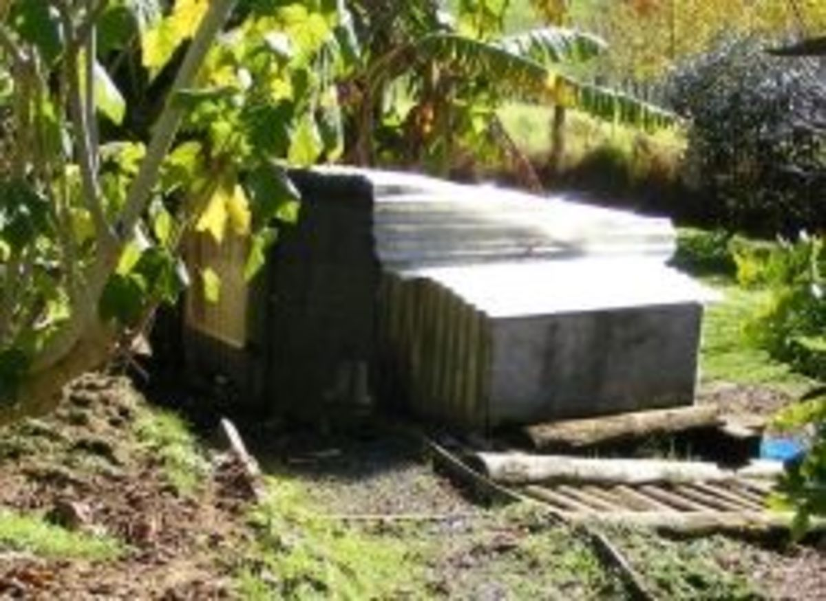 Simple hen house from materials lying around
