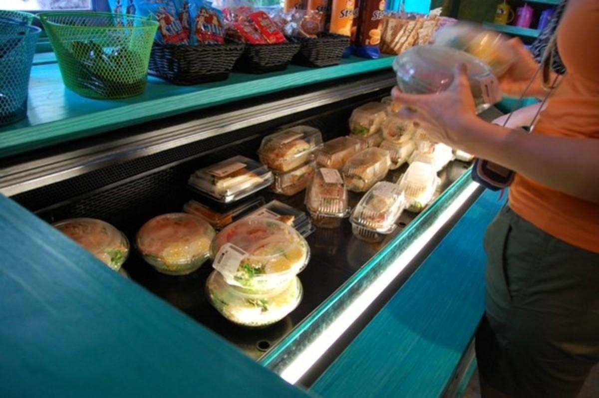 Best Quick Service Meals at Disney World