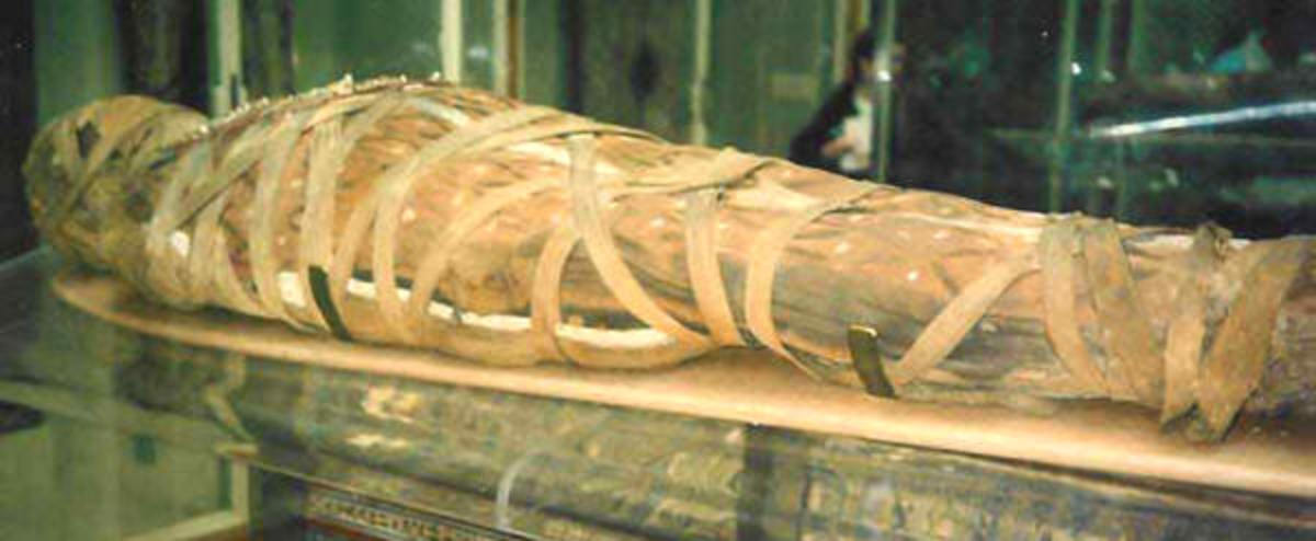 A mummified body