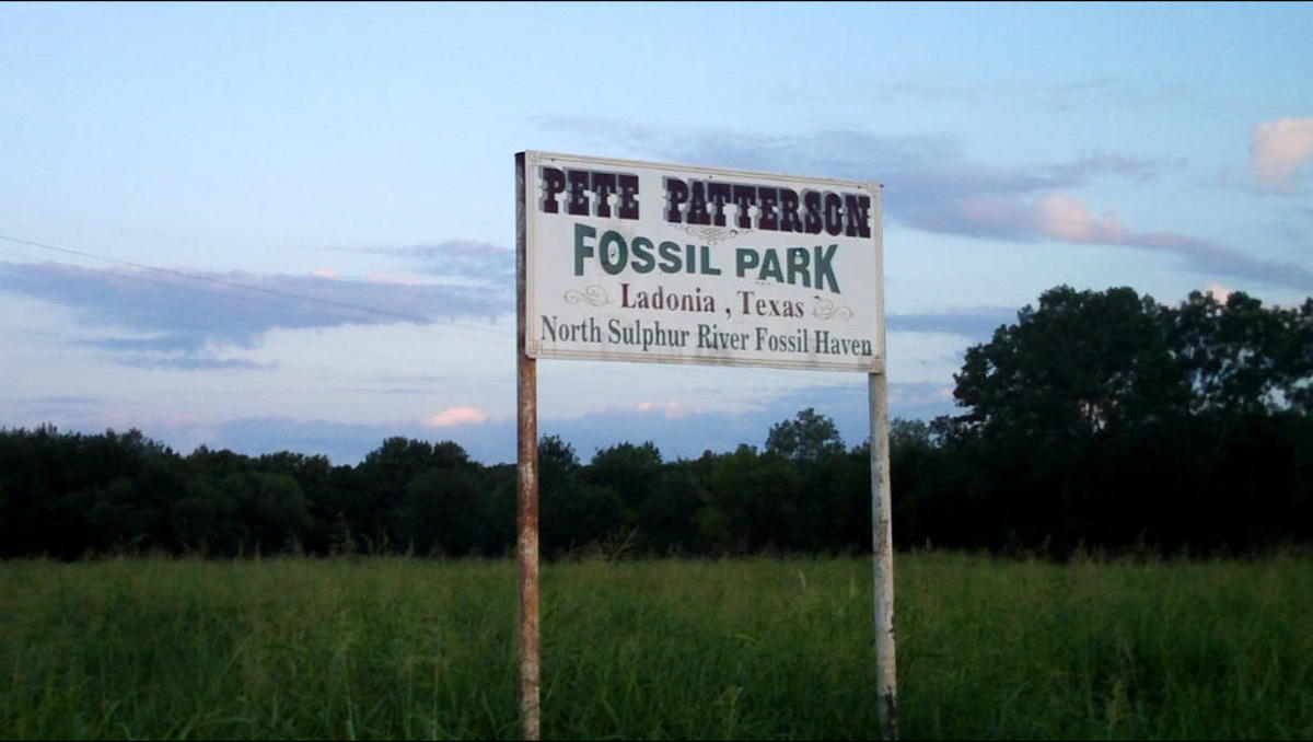 North Sulfur River Fossil Hunting.