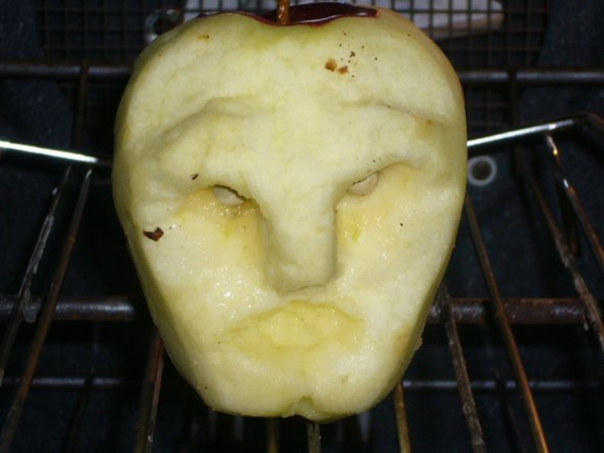 This is the photo taken immediately after carving the apple when it was placed in the oven.  The oven was heated to 200 degrees and then turned off to create a warm, dry environment.  (The metal in the background is a metal rack - not a nail.
