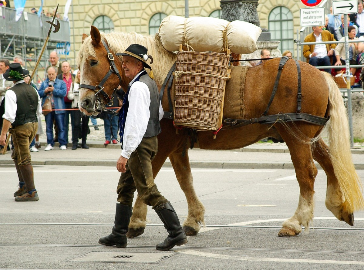 This is a parade in Munich, Germany. The owner wears a traditional German costume and the horse carries beer making supplies.