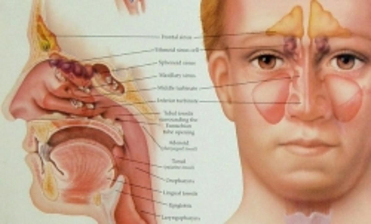 Sinus Pressure and Pain Behind My Eyes