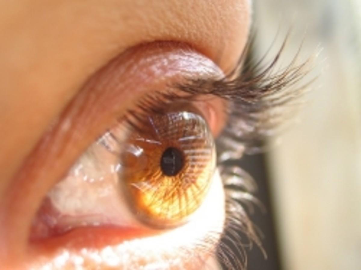 Photophobia and Eye Pain