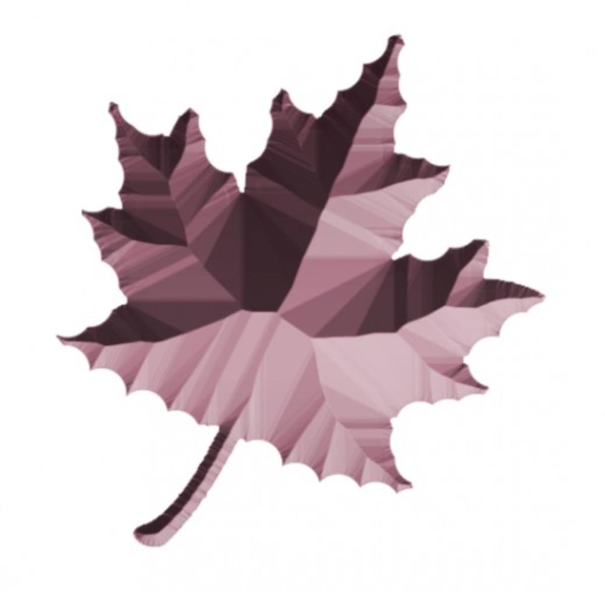 Textured foliage 5.