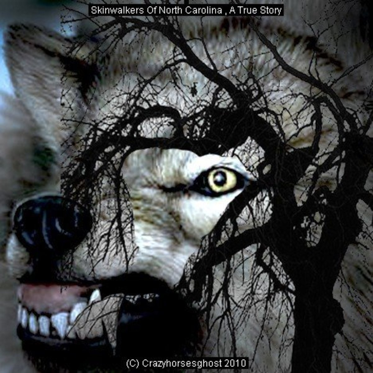 Skinwalkers Of North Carolina A True Story | HubPages