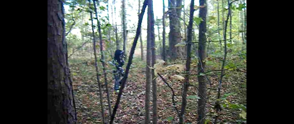 Is This A Baby Werewolf Captured On A Deer Trail Camera In North Carolina