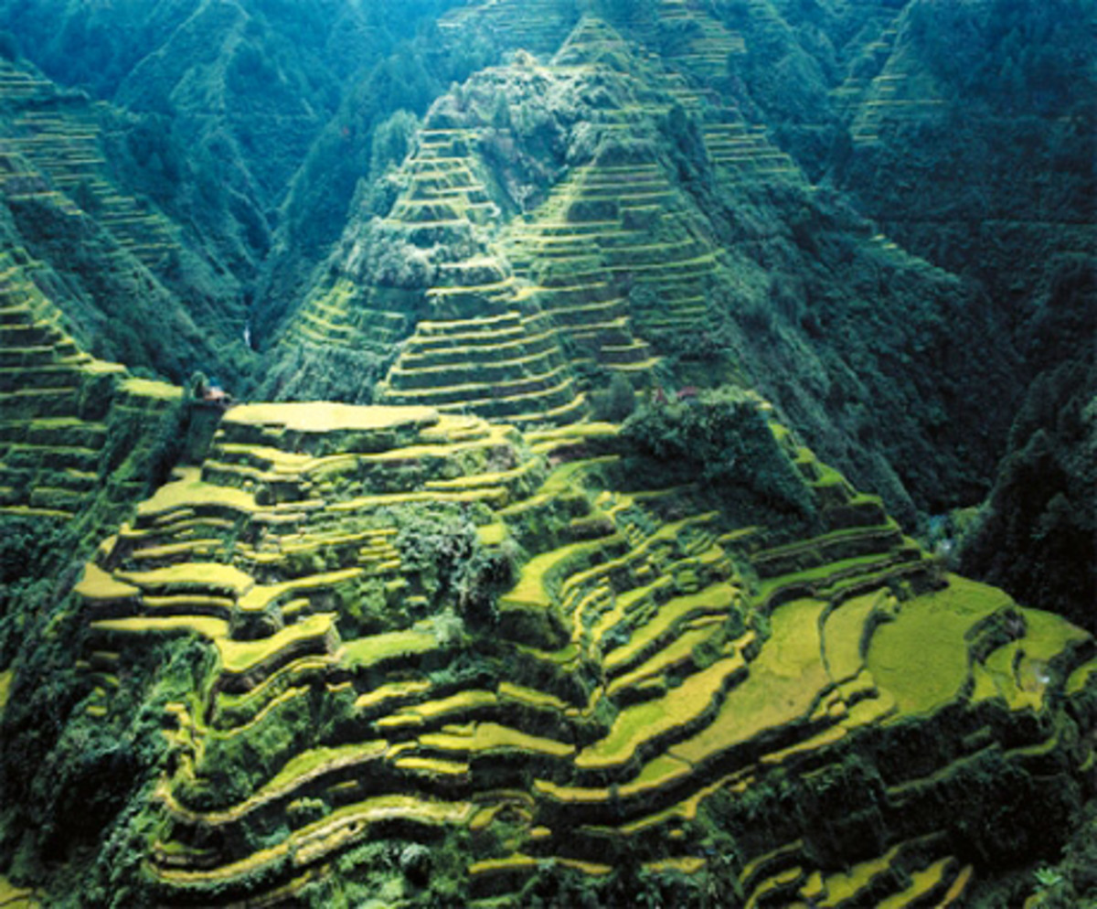 They carved  into the steep mountainsides a panoramic vista of stairways of rice fields reaching up to the skies.An astonishing feat of engineering,when you consider that they were constructed of mud and stone almost entirely by hand 2000 years ago.