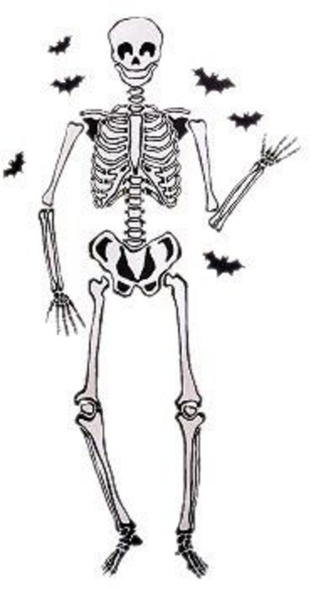 Wallies Skeleton available on Amazon