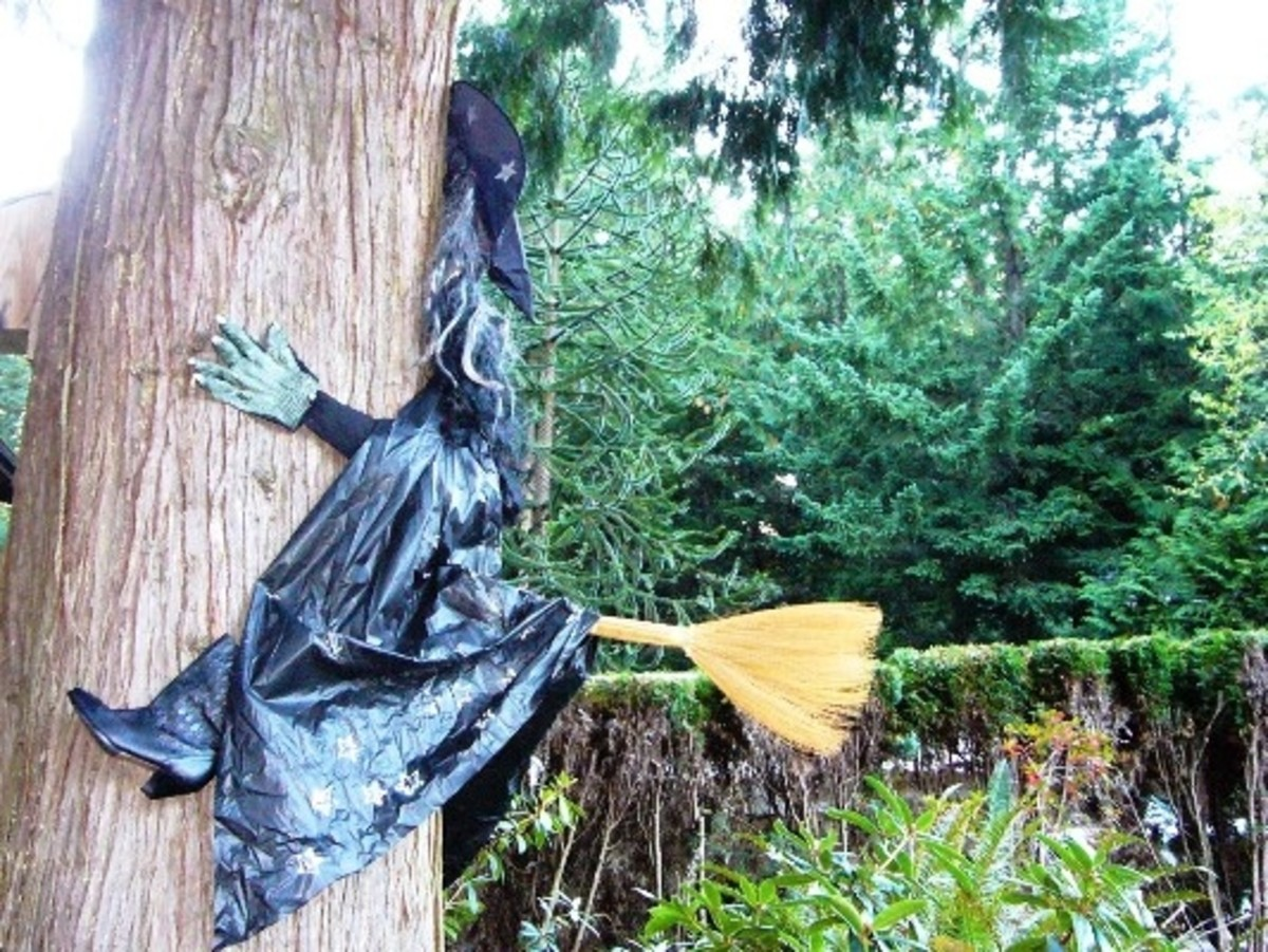 Attach the arms and hands to the tree with nails, screws or staples and add the witch's broom to complete the crashing witch.