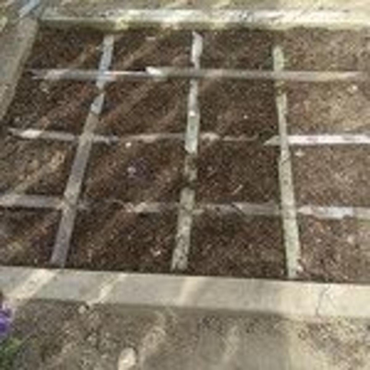 squarefoot-gardening