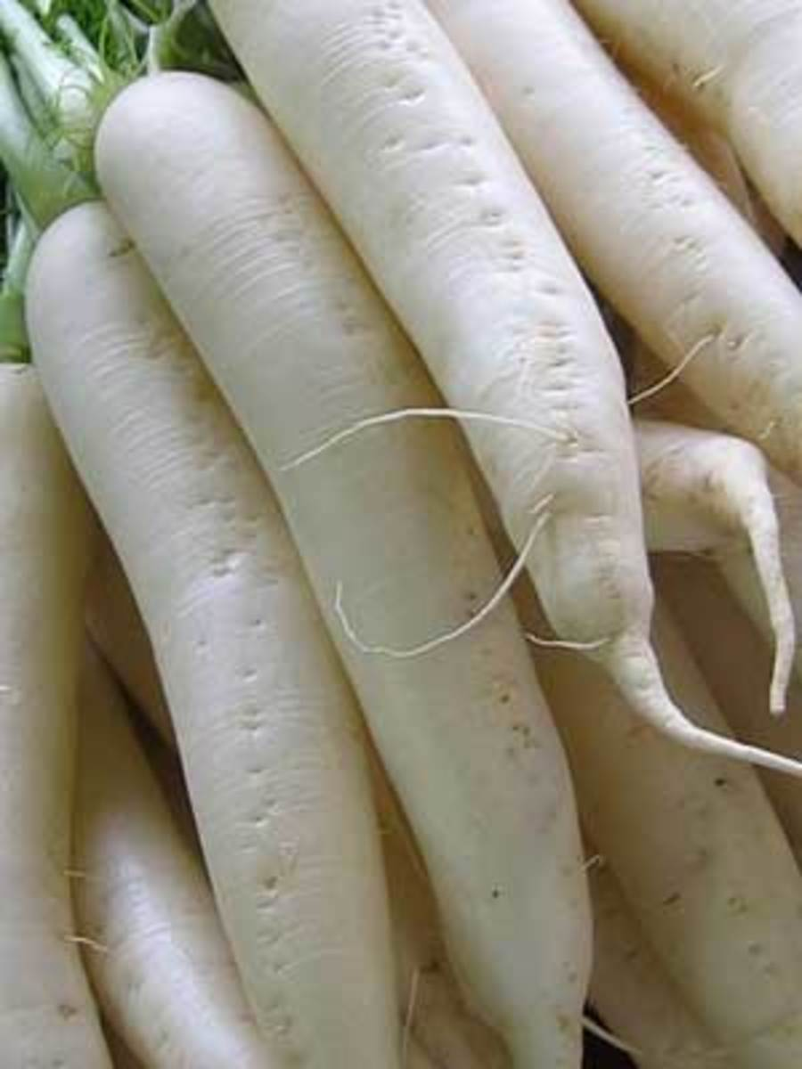 HOW TO CURE PHLEGM WITH RADISH