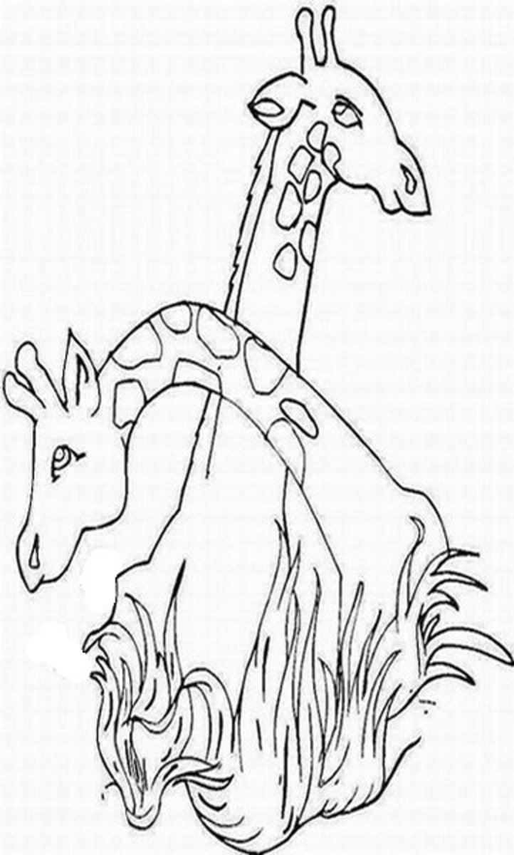 Zoo-Animals Coloring Pictures Colouring Pages Giraffes