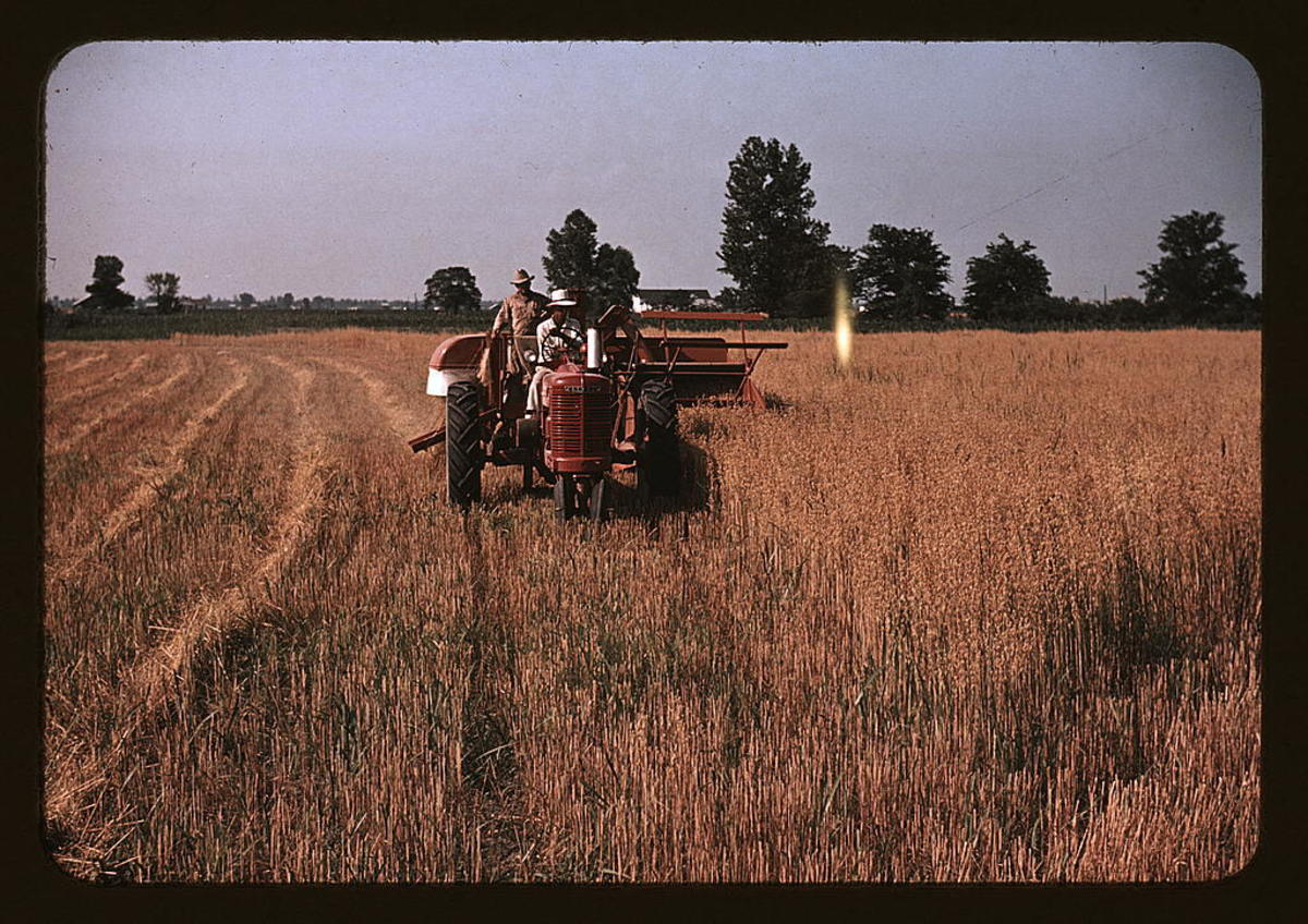 Farm Photos of 1940 IN COLOR!