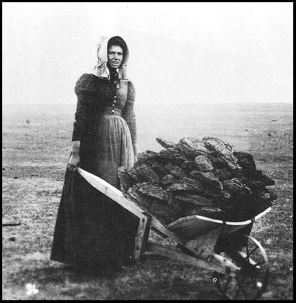 HUB IN THE HOOD: Pioneer Women WWGD?