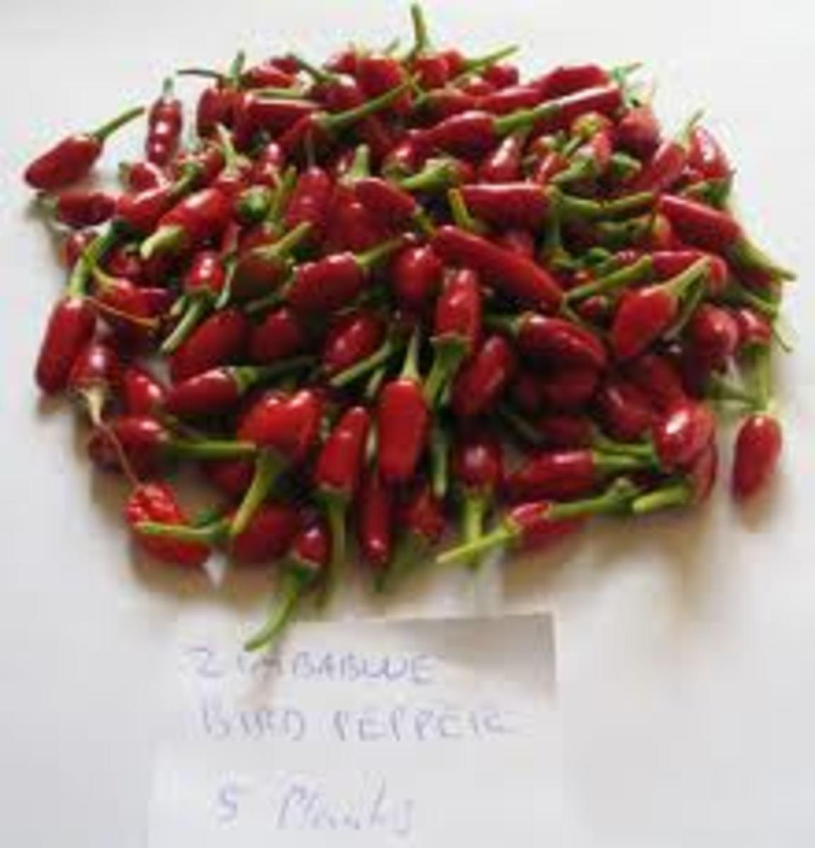 Bird pepper