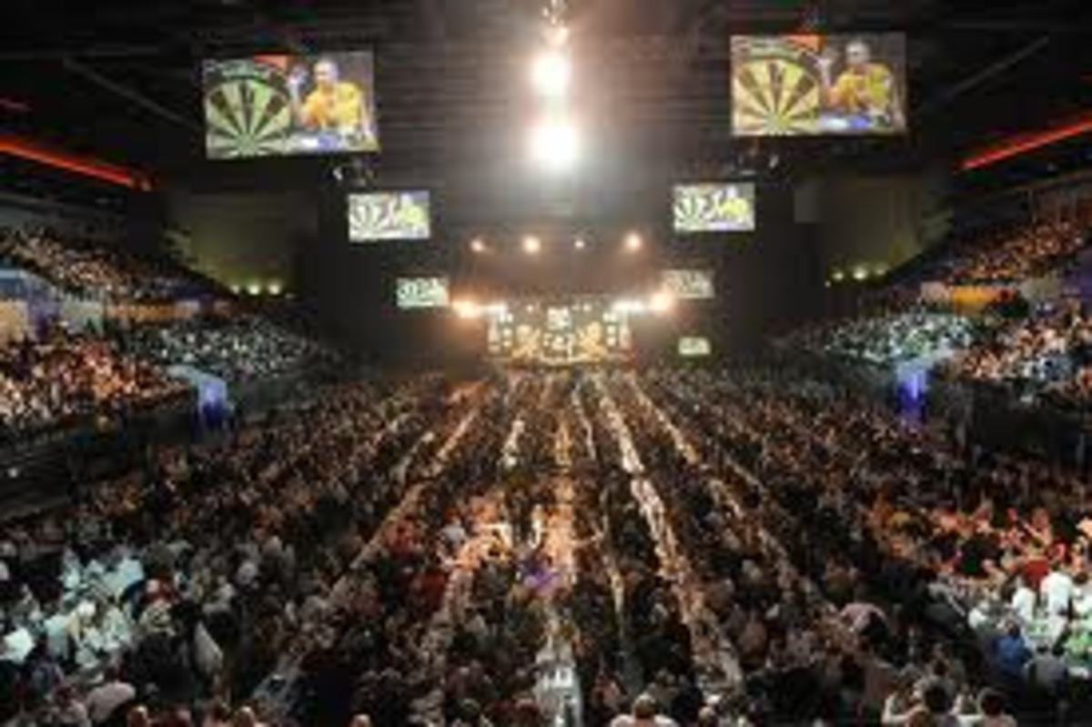 Professional darts players compete in front of crowns like this - believe it or not, this is an arena!
