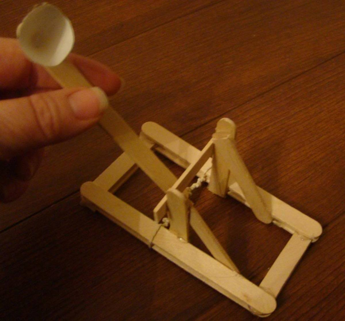 Homemade Onager catapult