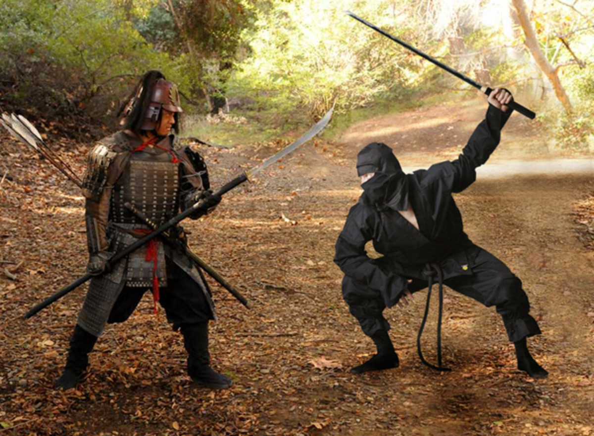 Ninja vs. Samurai; rarely on the same page