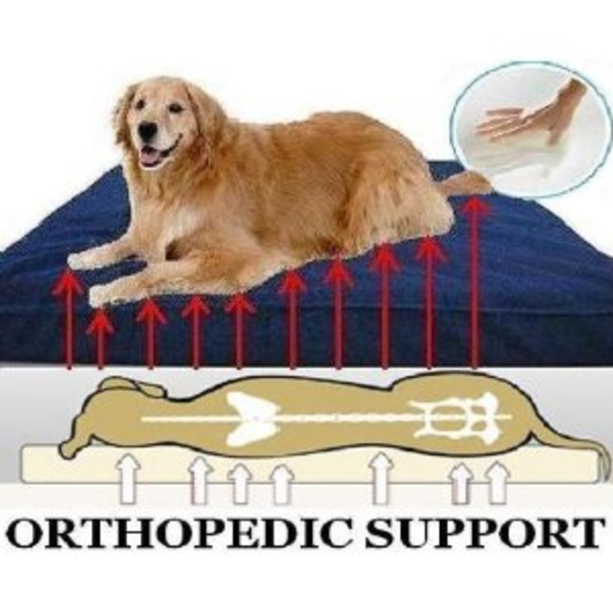 dogbedsforbigdogs