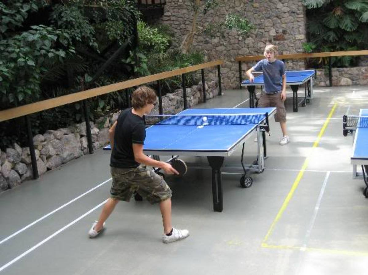 photo  photo by By cleopatra122 - Ping Pong and Table Tennis Difference, History, Fun Facts