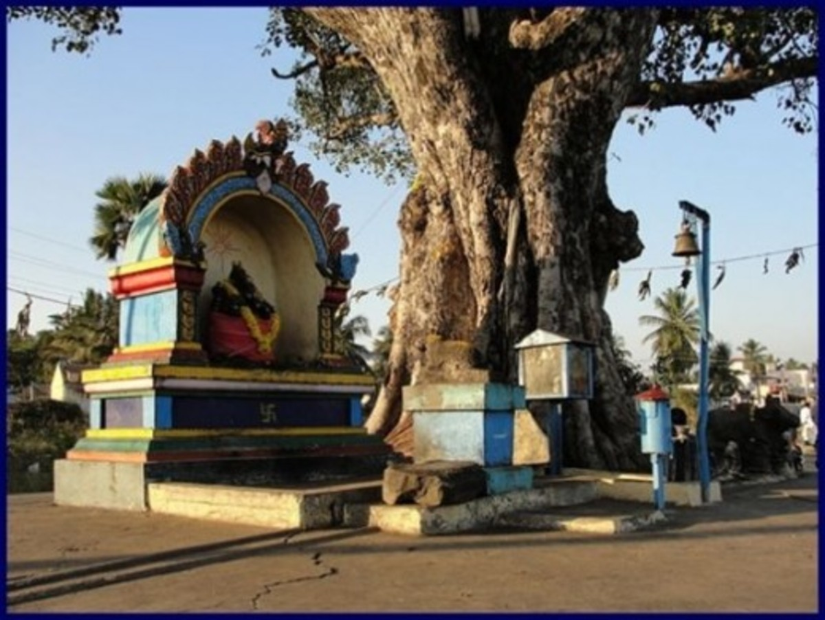 Road Side Village Temple
