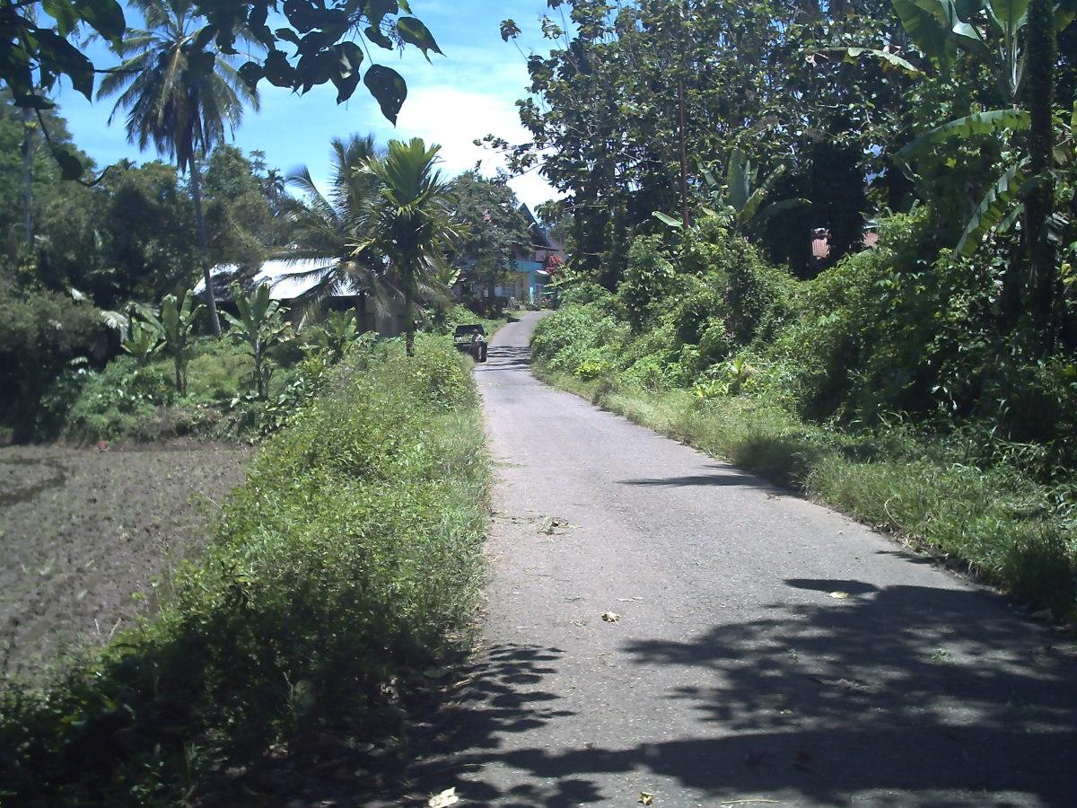Another view of the way to Nagari Kumango from Nagari Sumanik