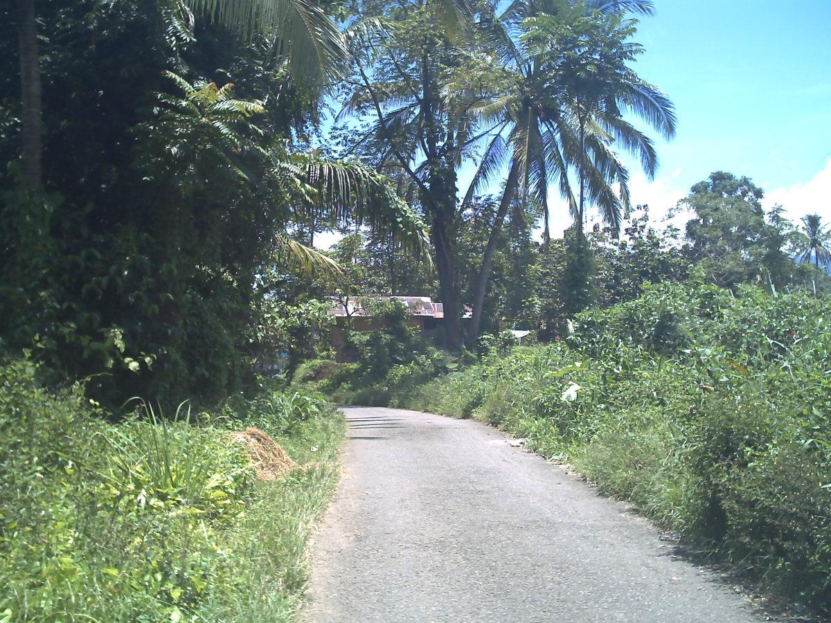 The way to Nagari Kumango from Nagari Sumanik