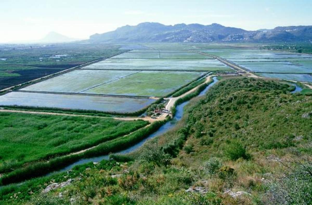 marshlands with Moorish water channels