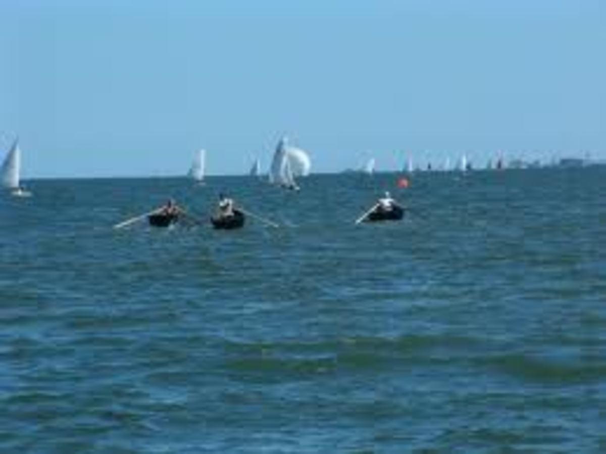 Irish currach racing on Strangford Lough