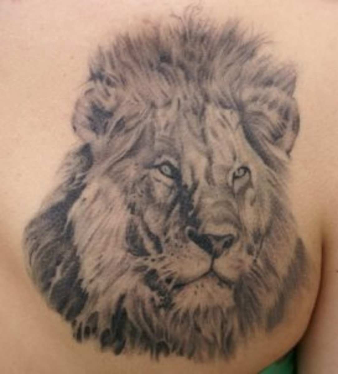 Majestic Lion Tattoos