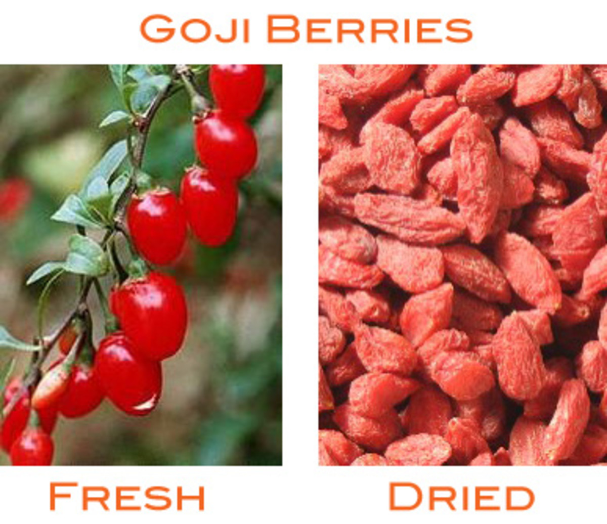 Goji Berries contain a LOT of iron.