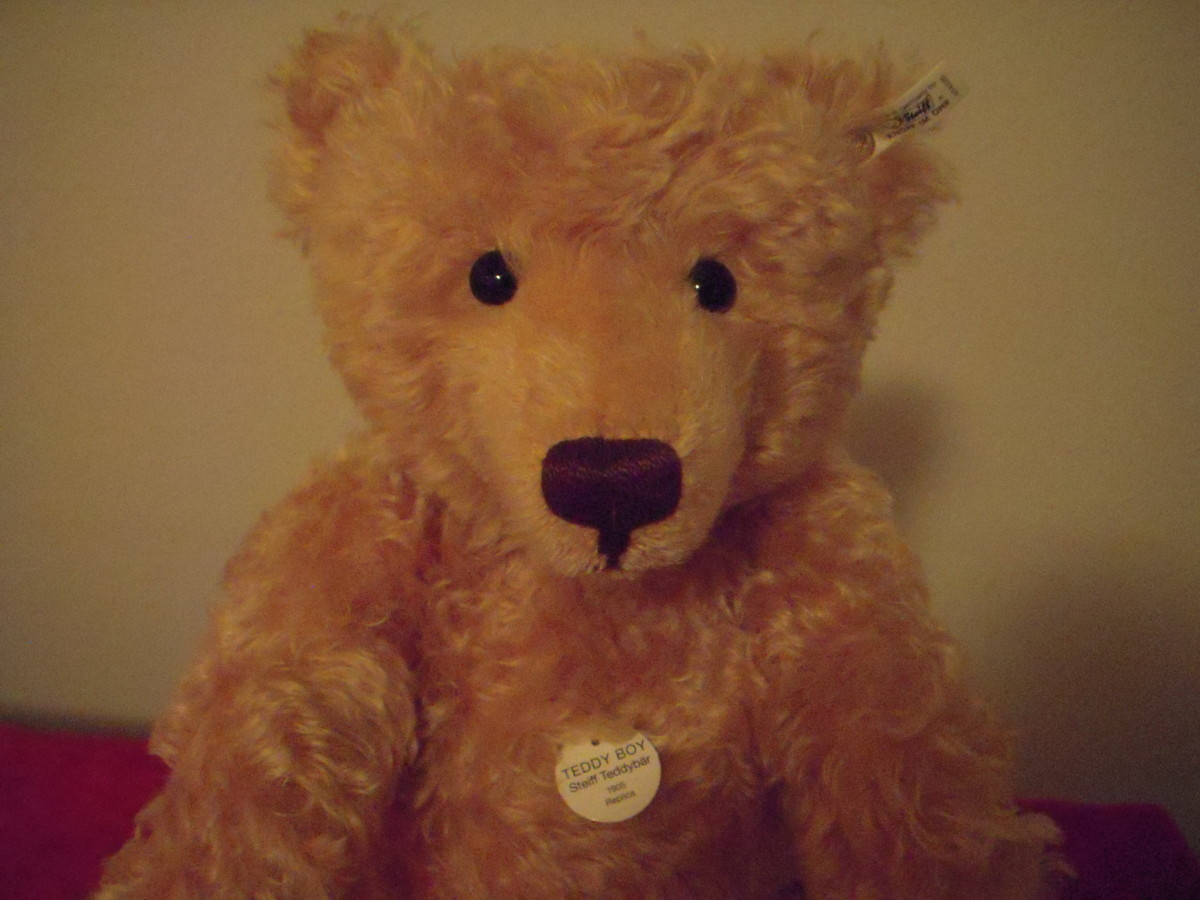 Teddy Boy is a limited edition Steiff, purchased in Frankfurt. Limited editions are individually numbered (on the back of their ear tag.)