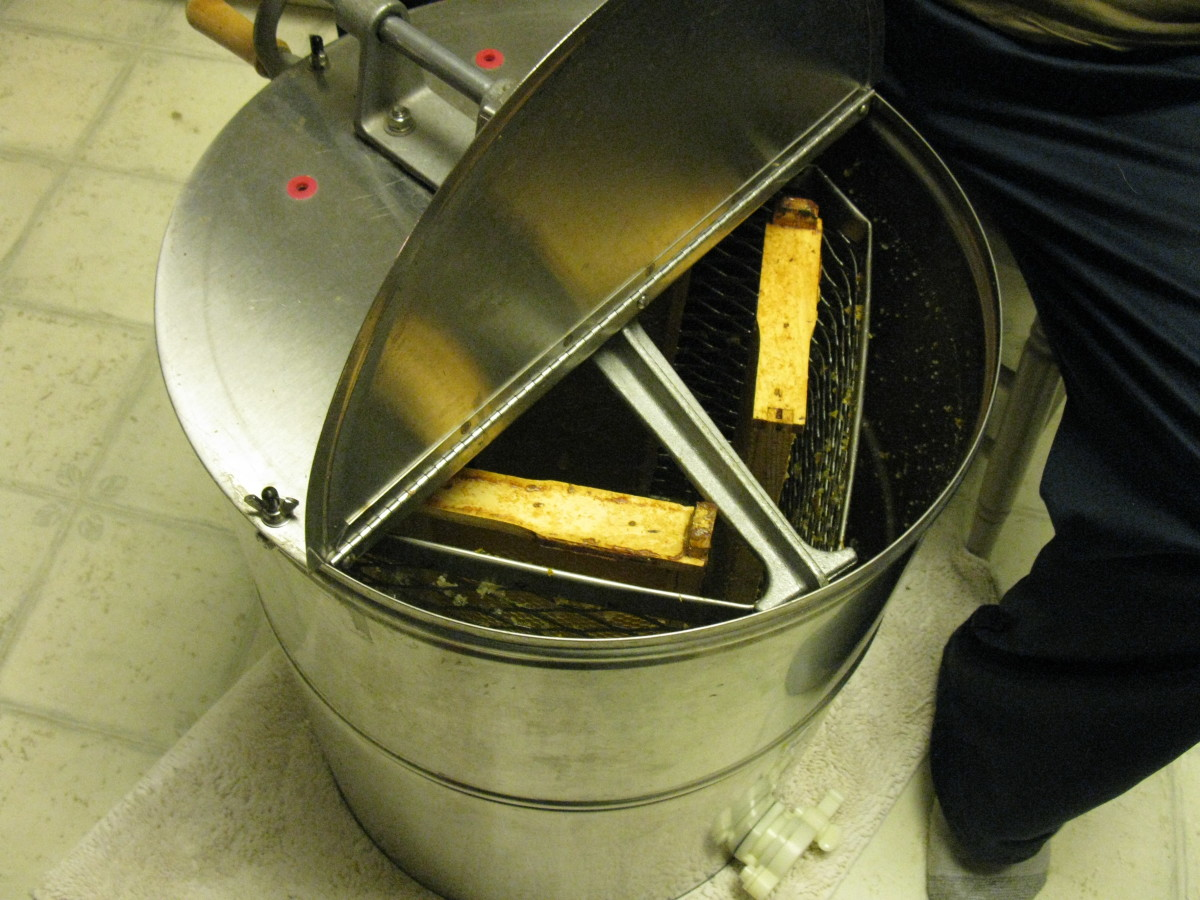 A 4 frame Dadant Extractor