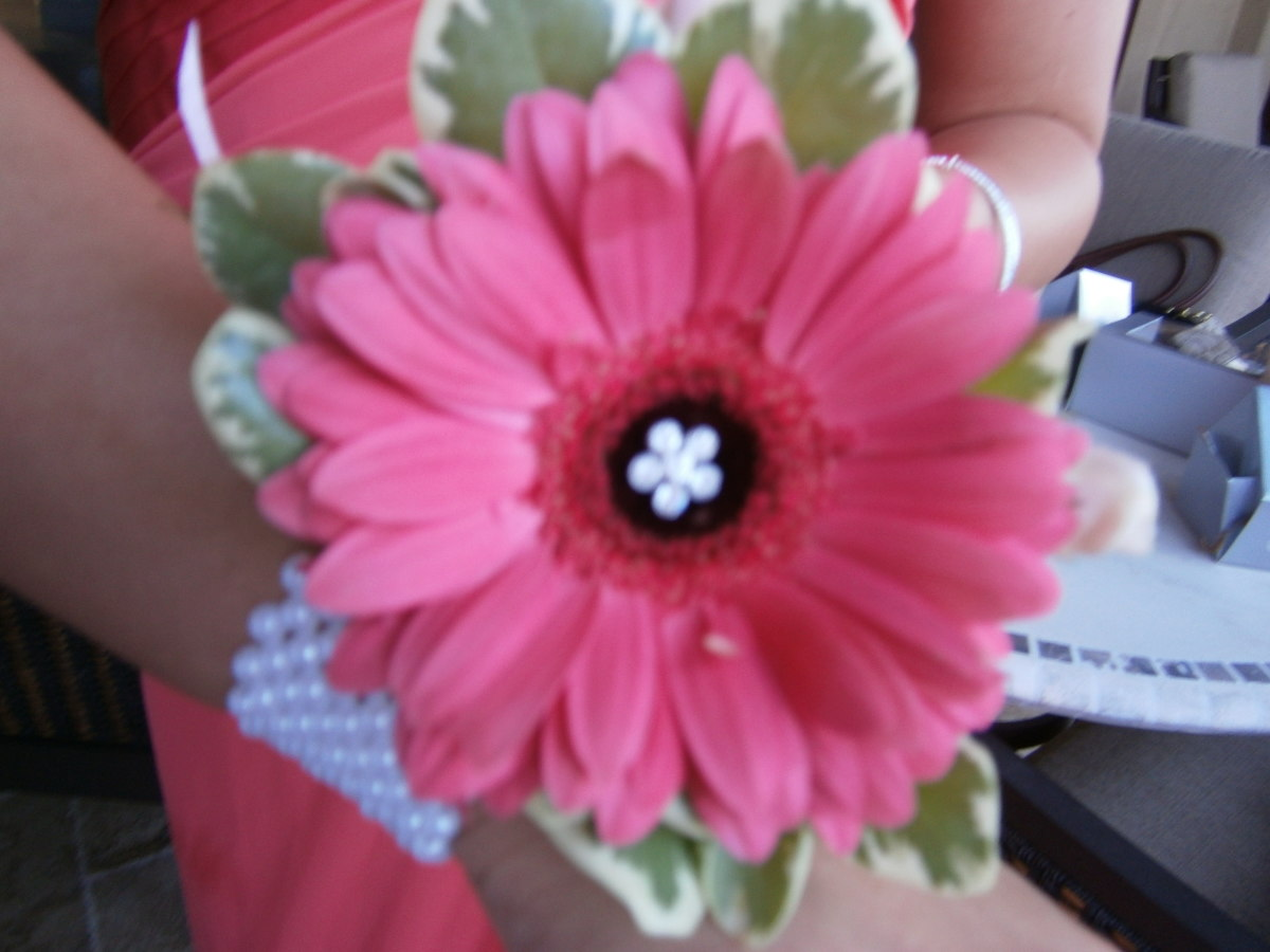 Michelle's pink Gerber Daisy corsage.