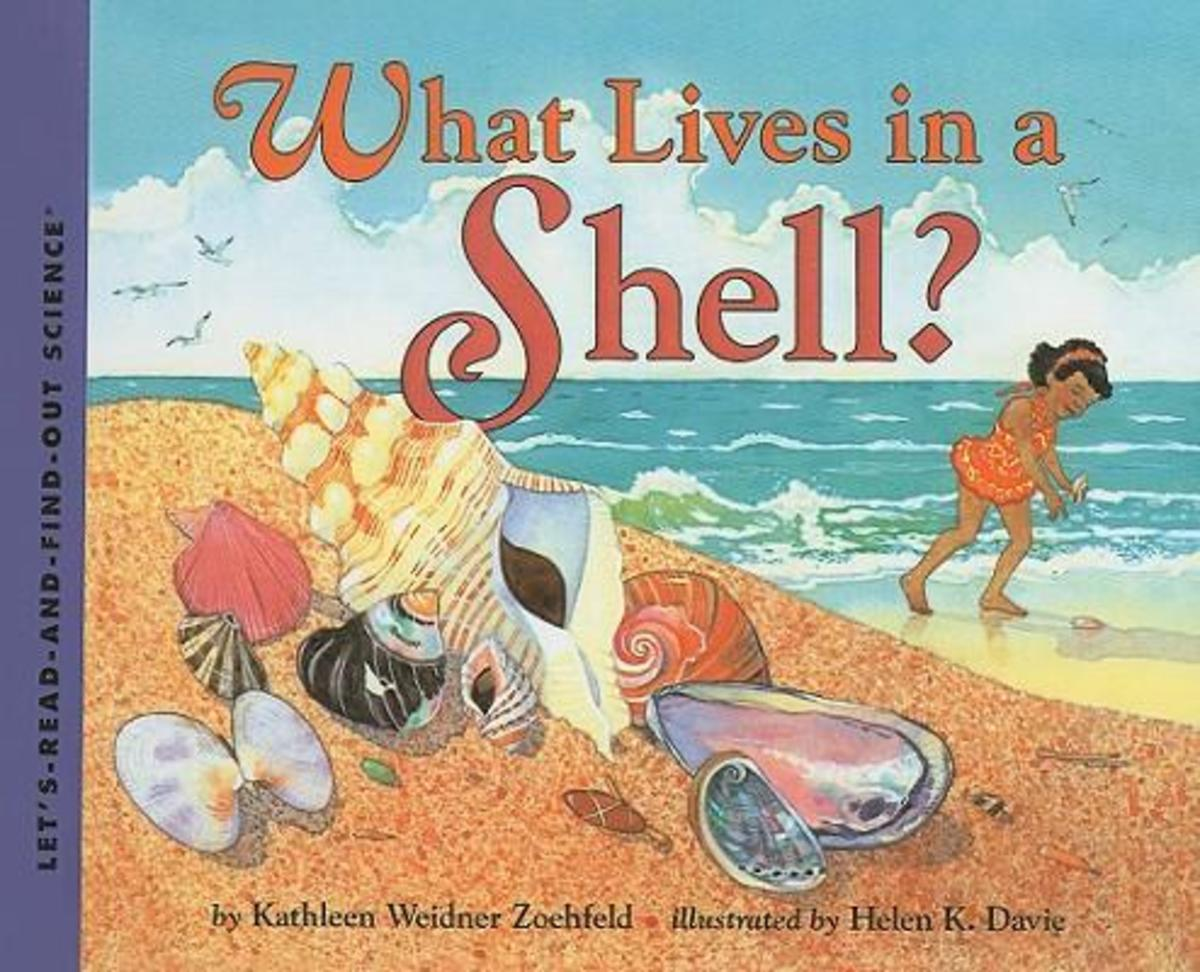 What Lives in a Shell? (Let's-Read-and-Find-Out Science 1) by Kathleen Weidner Zoehfeld